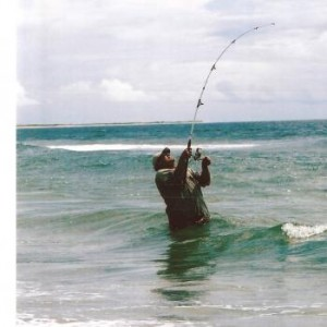 surffishing1-300x300